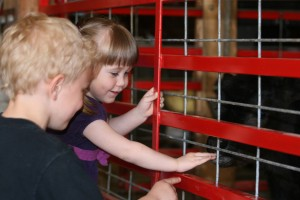Children petting animals at Heartland Acres Agribition Center in Independence, Iowa.